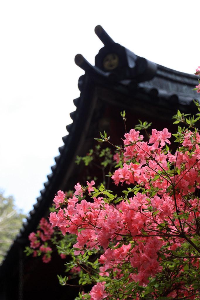 Temple in Nara