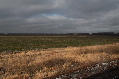 Open Russian fields beside the railway tracks in Ли́пецкая о́бласть (Lipetsk Oblast)