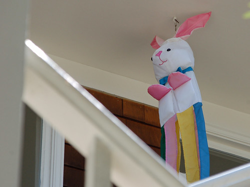 hanging bunny rabbit.jpg