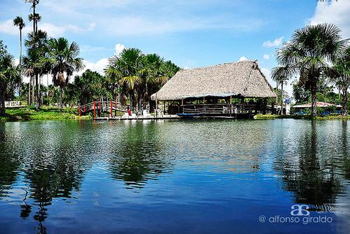 colombia laguna tame arauca piedemonte llanosorientales llanocolombiano lacunadelalibertad lacachama lacachamadelpalmar