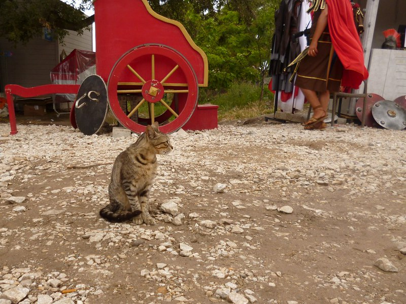 Catlen poses with fake chariot and gladiator