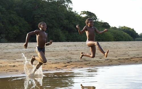 Amazonian life