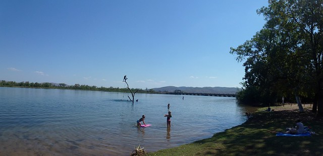 The Swim Beach Tree with Kununurra Diversion Dam in BG
