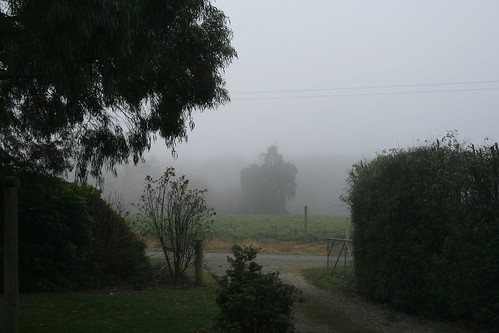 2013-08-11 - Gate view - 01 - Foggy weather