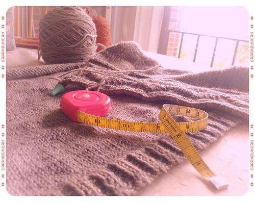 Sweater Progress 1