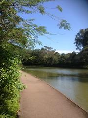 Lakeside at Botanic Gardens