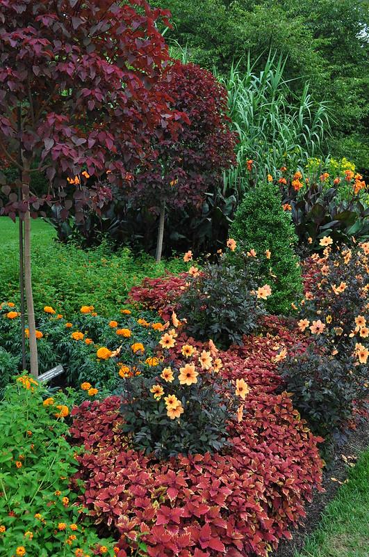 Flower Garden Walk (17)