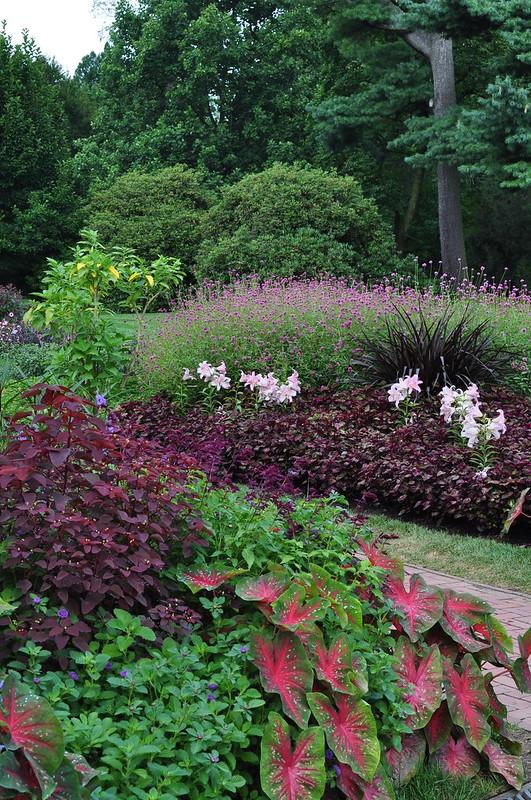 Flower Garden Walk (9)