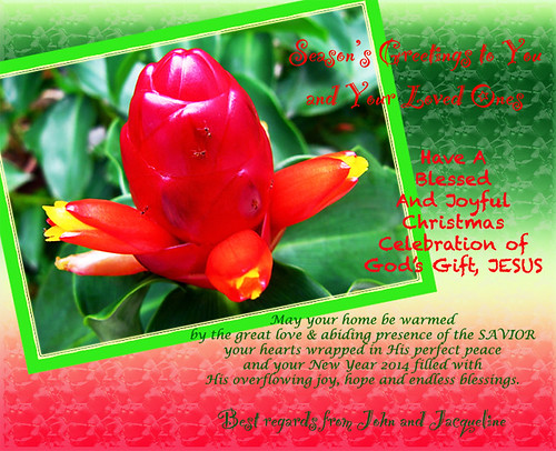 Christmas 2013 and New Year 2014 greeting card
