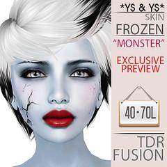 Frozen SKin @ TDR Fusion