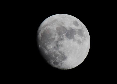 Moon IMG_0522