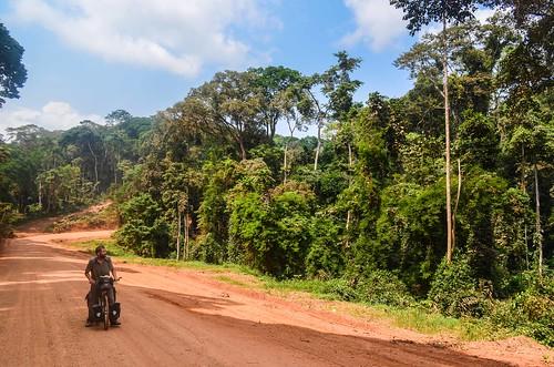 africa bicycle cyril day412 dirtroad gabon jungle moyenogooué piste roads routeéconomique freewheelycom cycling vélo cycletouring cyclotourisme velo jbcyclingafrica