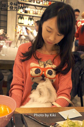 cat_5th (35)