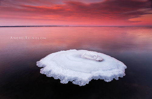 longexposure morning pink winter red sea sky cloud sun snow seascape cold color detail reflection ice beach nature water colors horizontal stone set clouds sunrise landscape outdoors photography lights mirror coast early frozen marine colorful europe long exposure frost estonia day view outdoor january atmosphere nopeople baltic fresh adventure clear crisp shore silence land nordic rise scape bog cristal icicles northen andrei beautifulnature beautifullandscape colorfullandscape leefilter balticlandscape estonianlandscape europeanlandscape reinol andreireinol
