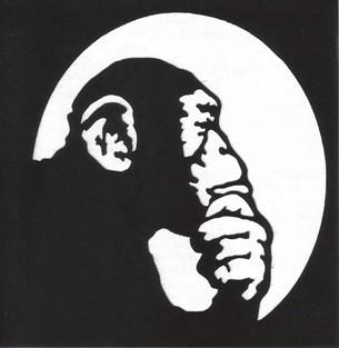 Ape1Small