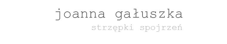 strzępki spojrzeń - joanna gałuszka - blog