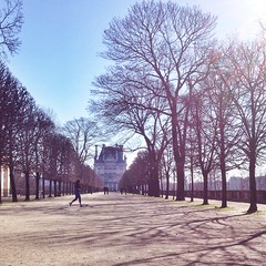 Footing au Jardin des Tuileries