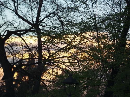 Colori dal cielo tra alberi by Ylbert Durishti