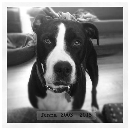 R.I.P. Jenna