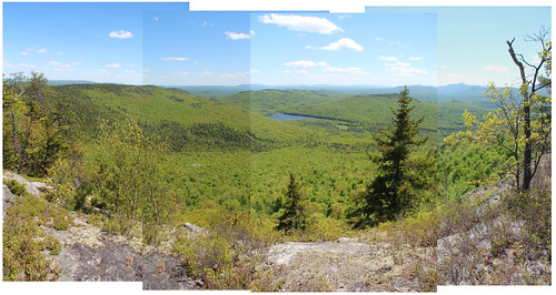 blueberry mountan panorama