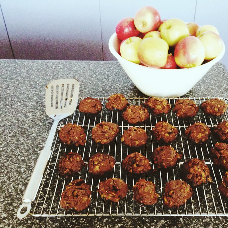 Snapshots // August 26 ~ apples and cookies