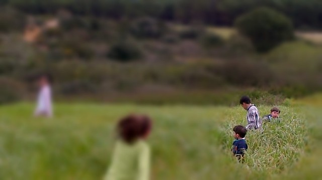el Gasr sh3ir_cropped f1.4Fotor