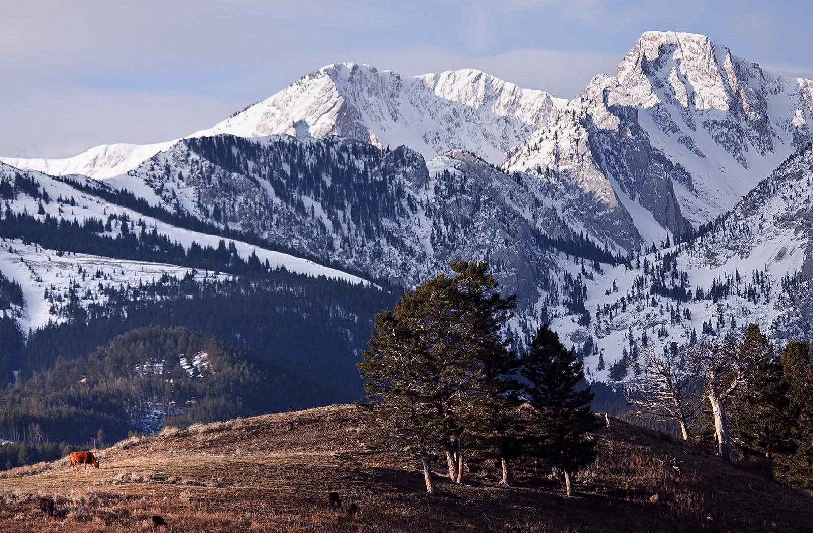 Montana is beautiful. [pic]