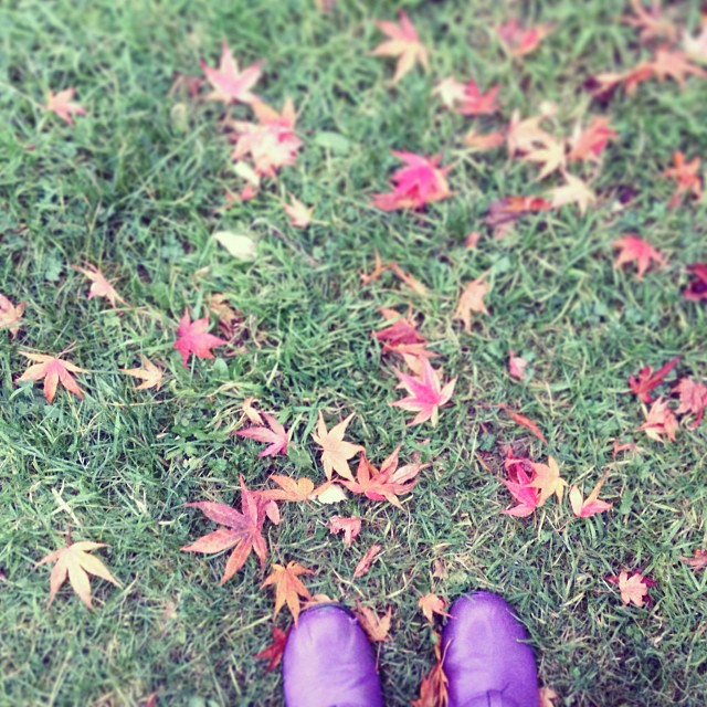 #love #autumn #leaves #purple #boots #red #leaves #selfie #ish