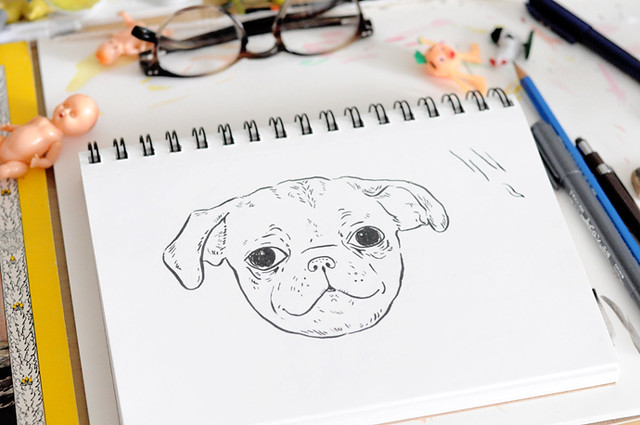 pug puppy drawing