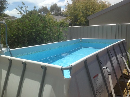 Census poll on intex users page 18 for Intex swimming pools australia