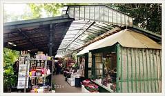 Marché aux Fleurs, Paris: market stalls dating back to 1808 | 2013-09