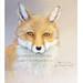 Day 5 Fox