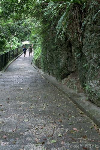 濡れた石畳道 / wet stone road
