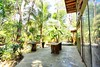 Back Patio Jungle House by Joe Gatto Costa Rica