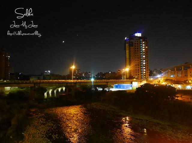 景美河堤公園 (1)
