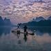 A New Dawn by Anna Kwa