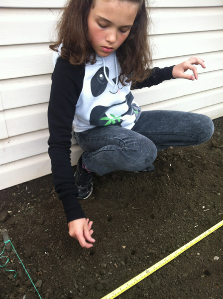 Kaylie planting her corn