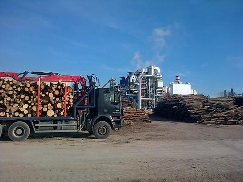 COMSA EMTE Medio Ambiente: Suministro de 50.000 toneladas de biomasa forestal a Termosolar Borges