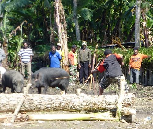 Papou13-Sinatma-Fete au village (4)