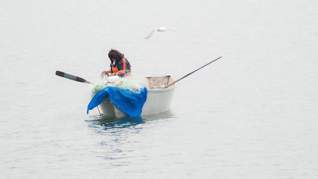 Live chetco river camera autos post for Sacbee fishing report