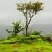 Varandha_Ghat-10