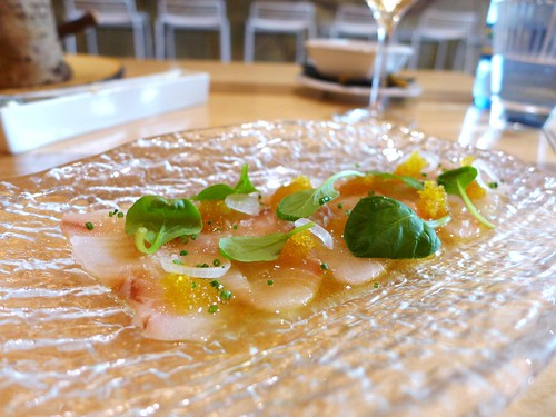 Vuelve Carolina sashimi