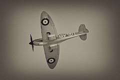 Spitfire - Airbourne, Eastbourne, August 2013