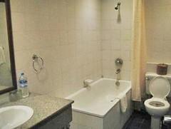 Thamada Hotel bath room