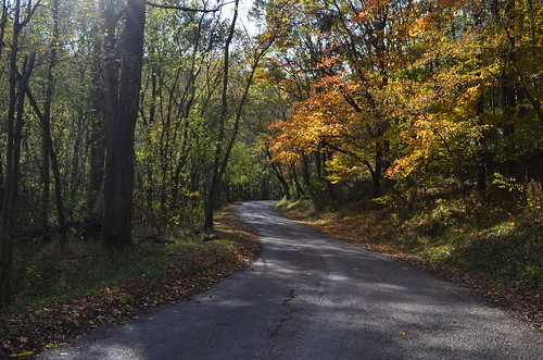 road autumn light ohio fall landscape roads backroad hocking clearcreek