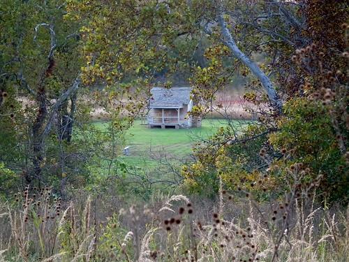 trees history grass cabin logcabin civilwar hay generalsterlingprice wilsonscreeknationalbattlefield edwardscabin