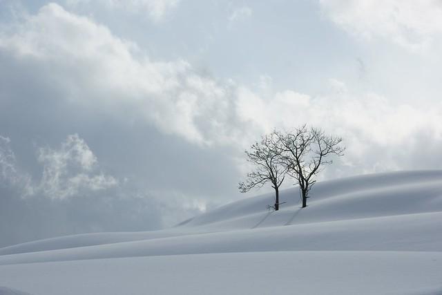 写真_冬の終わりに
