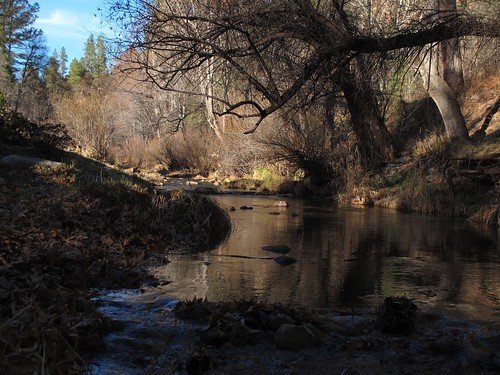 light shadow arizona southwest nature beauty creek forest outdoors stream december view az adventure exploration upstream riparian creekside kohlsranch tontonationalforest tontocreek gilacounty zoniedude1 earthnaturelife canonpowershotg12 5320ftelevation