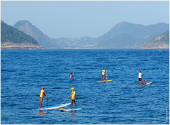 vehicle, sports, sea, bay, water sport, stand up paddle surfing, paddle,
