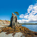 Rock Formation, Little Harbour East by Newfoundland and Labrador Tourism